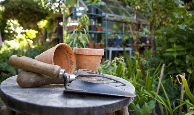como tener un jardin eco amigable