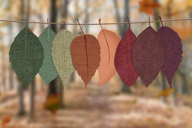 5 reformas para hacer en otoño